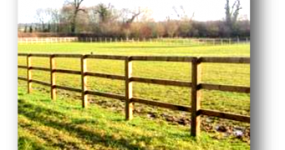 Image for Paddock Fencing and Field Gates