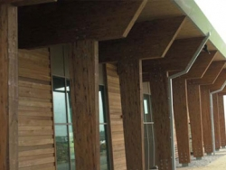 image for Finding Good Quality Cedar Cladding